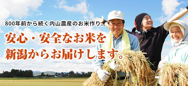 800年前から続く内山農産のお米作り。安心・安全なお米を新潟からお届けします